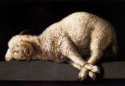 Cordeiro de Deus que tira o pecado